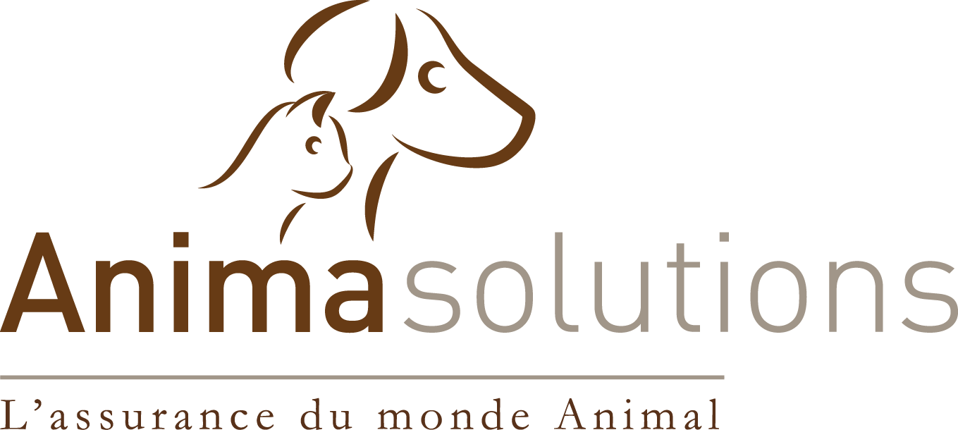Anima Solutions, L'assurance du monde Animal